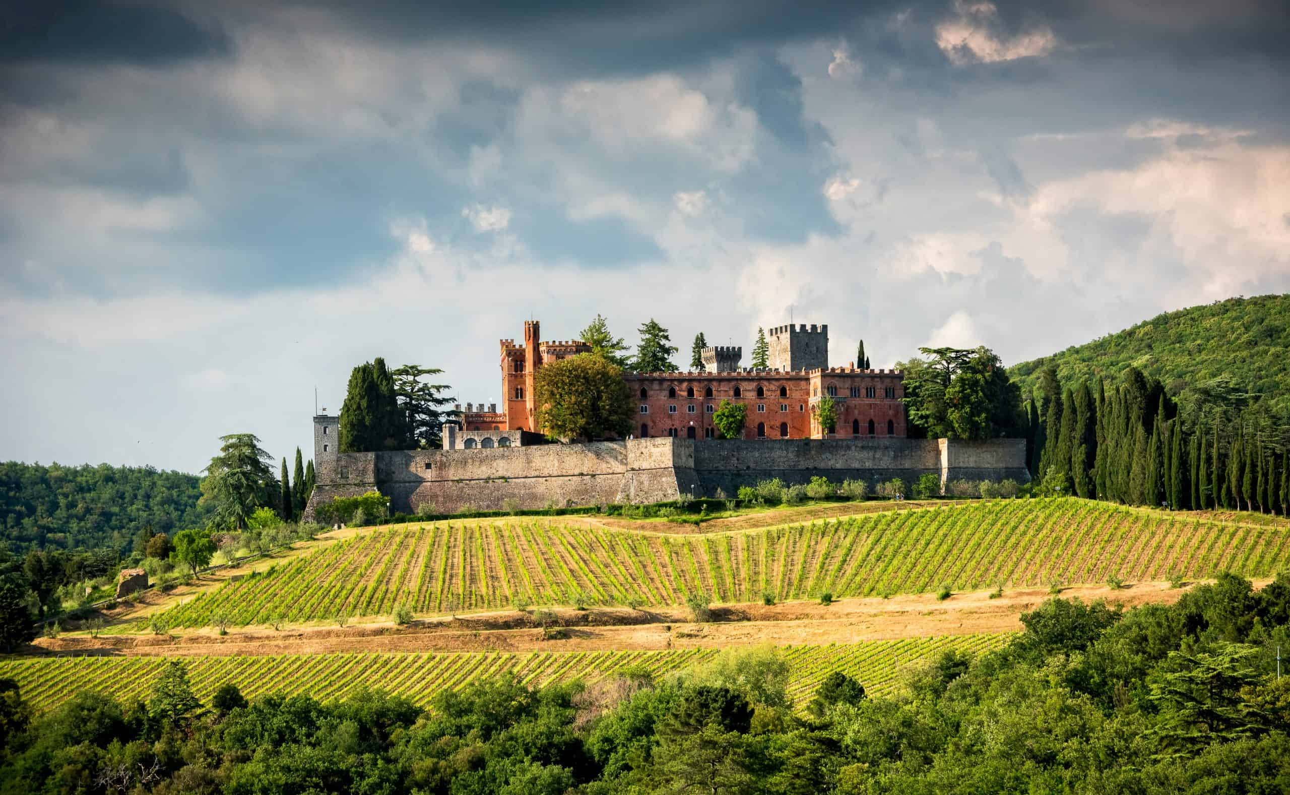 Tuscan Castle Overlooking vineyards